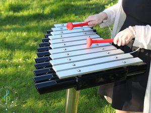 Xylophones and Metallophones